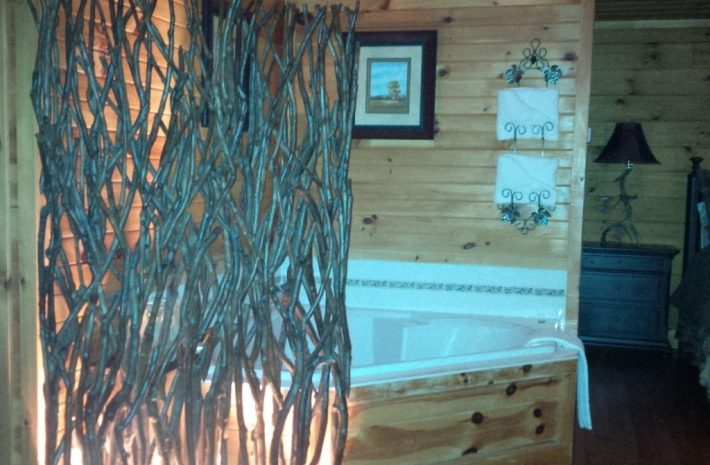 "Cabin 11 ""Antlers"" Room Image"